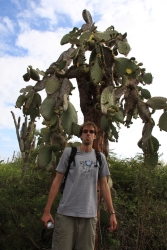 Ognen and the tall strange cactus trees
