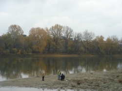 Danube beach in fall