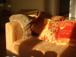 our new place gets lots of sunshine... we love it