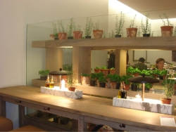 inside Vapiannos - one of our other favorite restaurants