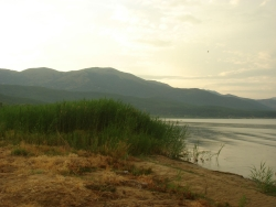 the old sandy beach at Lake Prespa now reduced to a marsh